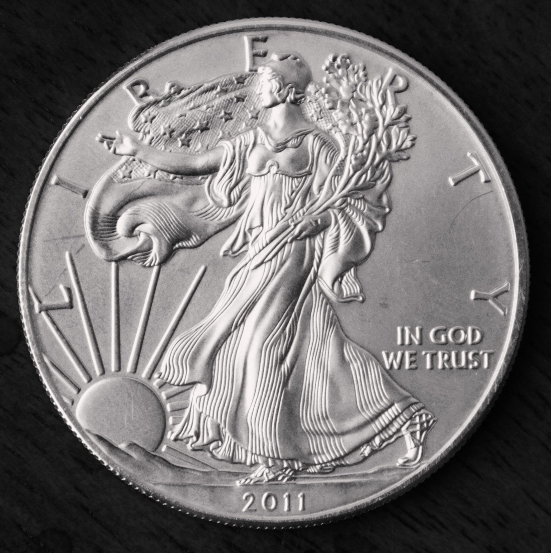 Silver Eagle - Front BW