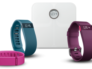 Fitbit Products - IITF - Learn to Invest - TickerTags